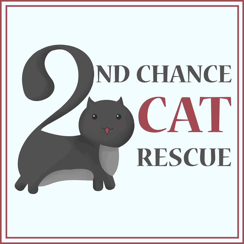 Cat Rescue Central Coast Nsw